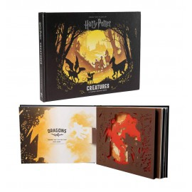 Libro Pop-Up Harry Potter...